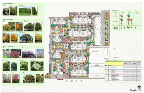 Feature Tree Planting Plan